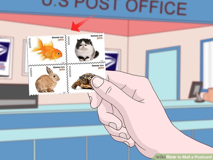 How to Mail a Postcard