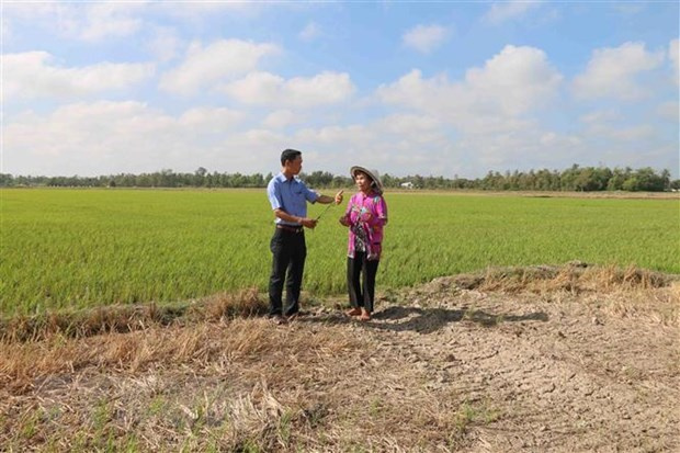 Mekong Delta of Tra Vinh, Vietnam News Agency, drought, saltwater intrusion, Department of Agriculture and Rural Development, Related stories Tra Vinh, Mekong Delta of Tra Vinh, Vietnamplus, Vietnam News Agency, drought, saltwater intrusion, Department of Agriculture and Rural Development