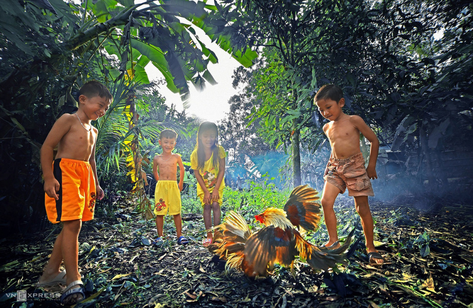 The colors of life in Mekong Delta - VnExpress International