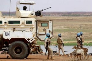 Vietnam calls for more efforts for peace in Mali