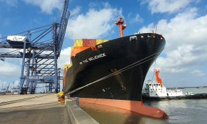 New Vietnam-US container shipping service launched