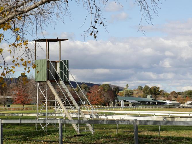 Former Mudgee Race Club head Colleen Walker takes NSW Racing to court