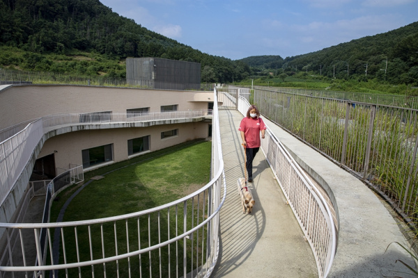 Korea on path to better treatment of abandoned animals