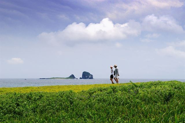 Jeju Olle launches English-guided hike program for foreigners