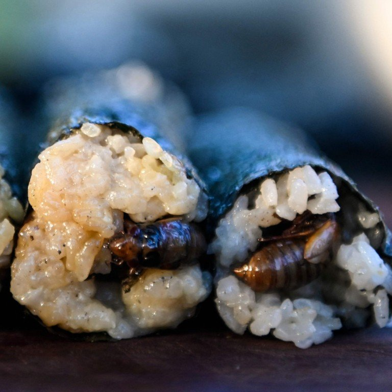Eating bugs, anyone? With fried cicada sushi roll, Hong Kong-born chef in US promotes sustainable food and farming